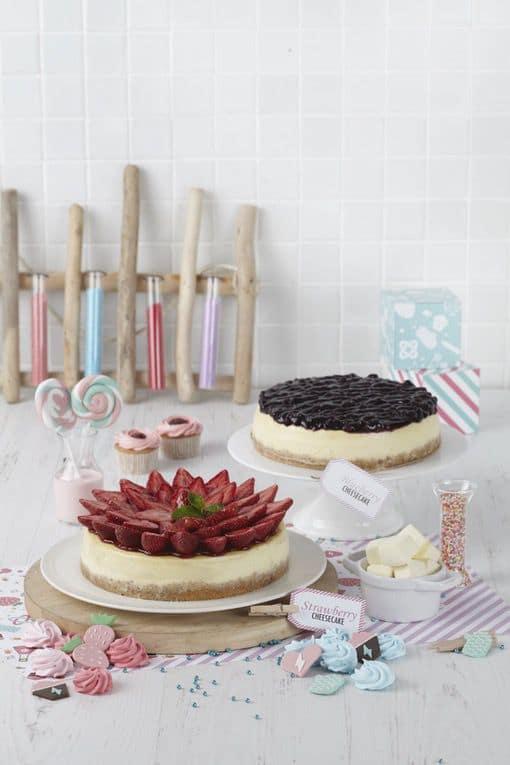 Strawberry Cheesecake & Blueberry Cheesecake
